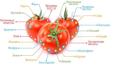 Польза помидоров
