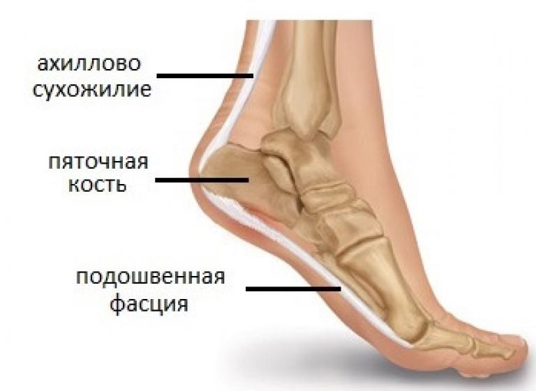 Грибки на ногах врач