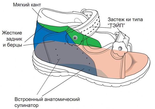 Правильный подбор обуви